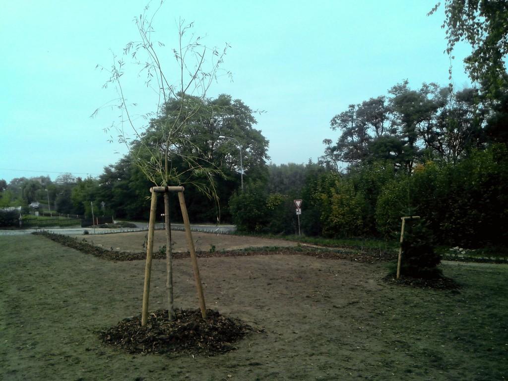 obnova zahrady u obecní školy ve Chvaleticích