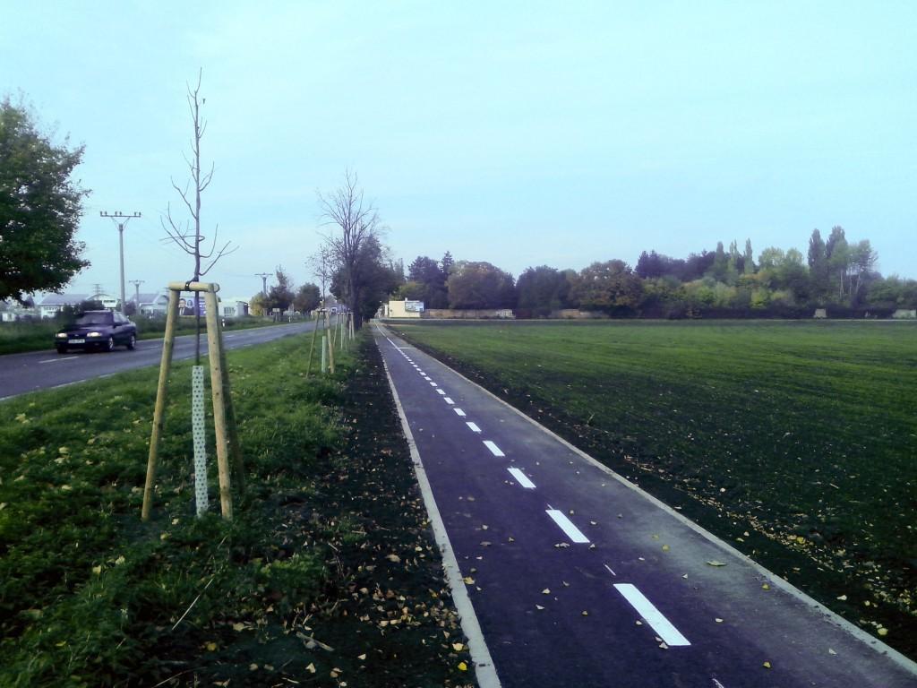 výsadba u cyklostezky Prostějov–Žešov