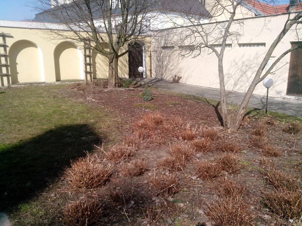 revitalizace zahrady v základní umělecké škole v Kroměříži