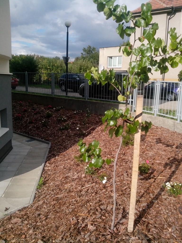 zahrada v justiční škole v Kroměříži